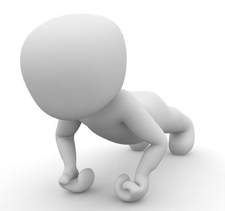 Das vierte Modul: Trainingsprogramm Kraft