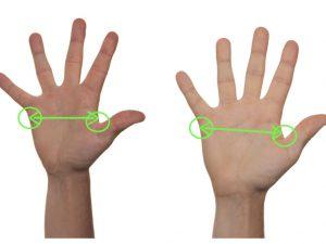 Bild Handschuhgröße messen